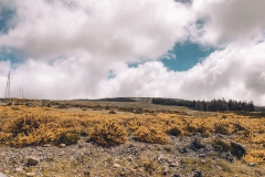 Madeira Adventureland Off Road 3